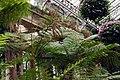 Longwood 2011 09 02 0314 (6160251219).jpg