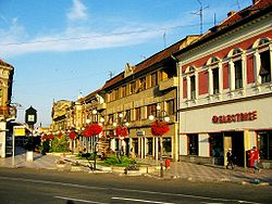 Lugoj Center.jpg