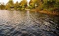 Lurgan Park (5) - geograph.org.uk - 1529279.jpg