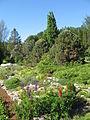 Luua arboretum.jpg
