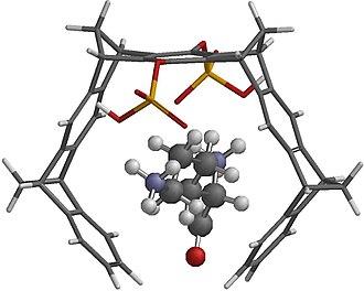 Molecular tweezers - Image: Lysine+tweezer