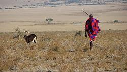 definition of herder