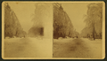 Main Street in winter, Saco, Me, by H. L. Webber.png