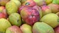 Mango (38373071855).png