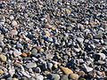 Many pebbles.jpg