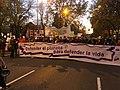 Marcha por el Clima 6 Dec Madrid -COP25 IMG 4332 (49182290918).jpg