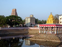 Marundeeswarar Temple and Tank glow in the morning sunlight