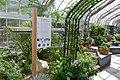 Mediterranean Room at the US Botanic Garden (25404773304).jpg