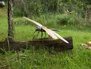 Meganisoptera - Supposed model of a meganisopteran, although the painting incorrectly depicts pterostigma on the forewings.