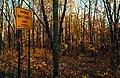 Minimum Maintenance Road - Maplewood State Park in Autumn (37099255863).jpg