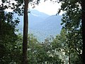 Misty mountains sabarimala kerala - panoramio.jpg