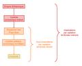 Modèle de contrôle par captation territoriale indirecte par contrôle économique indirecte.PNG