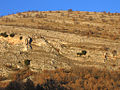 Montagna di pietra.jpg