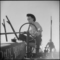 Monterey County, California. Rural youth. Mechanization, the agricultural employee. At the wheel of a farm-all tractor - NARA - 532242.tif
