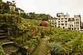 Montmartre vineyard 2012-10-09 n1.jpg