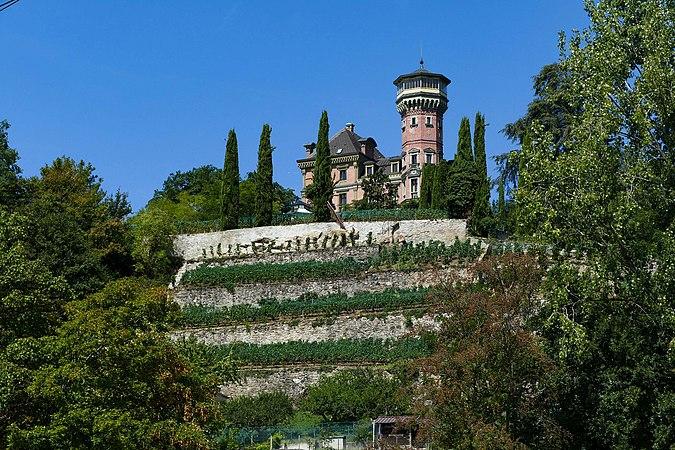 Montreux, Château des Crêtes à Clarens (3).jpg