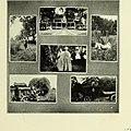 Mortarboard (1920) (14798453793).jpg