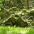 Mossiga stenar på Stenshuvud.jpg