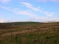 Mossy Bottom Barn - geograph.org.uk - 56775.jpg