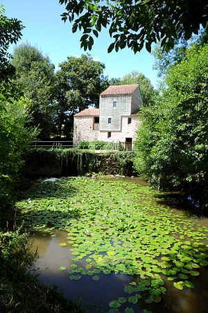 Nesmy - The Rambourg mill