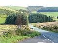 Mountain road to Llandiloes - geograph.org.uk - 1522996.jpg