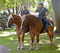 Mounted police officers in Lafayette Park, Albany, NY.jpg