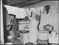 Mrs. Furman Currington, wife of miner, hangs up laundry in kitchen of her 6 room house which rents for $15.00 per... - NARA - 541256.tif
