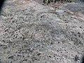 Munkedal Lökeberg foss 6-1 ID 10154500060001 IMG 0346.JPG