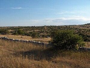 Altopiano delle Murge - Landscape of the Murge plateau.