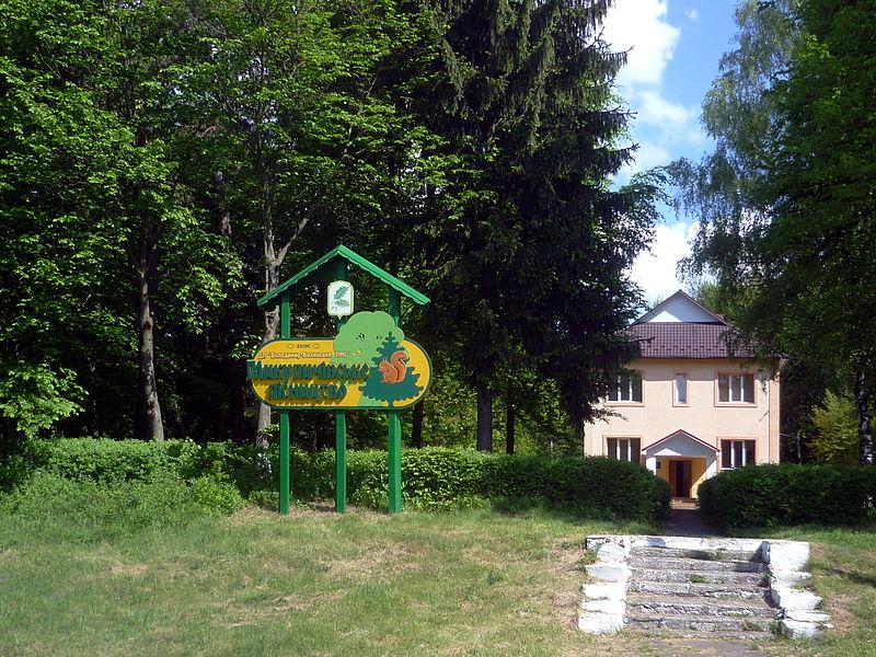 File:Mykulychi Vol-Volynskyi Volynska-zakaznyk forest Mykulychi-3.jpg