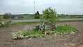 Nästegårdens gånggrift (RAÄ-nr Falköpings västra 2) 0474 plöjningsskadad.jpg