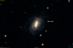 NGC 1657 DSS.png
