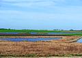 NRCSSD01047 - South Dakota (6113)(NRCS Photo Gallery).jpg