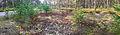 NSG Flechten Panorama 02.jpg