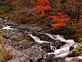 National Route 488、吉和村付近 - panoramio.jpg