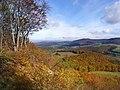 Naturschutzgebiet Boyneburg und Schickeberg bei Breitau, WDPA 81445.jpg
