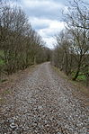 Nebenbahn Finnentrop-Wenholthausen (7066751999).jpg