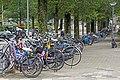 Netherlands-4049 - Bikes are Everywhere (11713470563).jpg