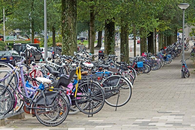 Для того, чтобы побудить голландцев чаще использовать велосипеды по пути на работу, нужно 3 млрд. евро