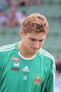 Nikica Jelavić - SK Rapid Wien (1).jpg