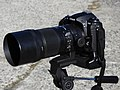 Nikon D300 + SIGMA APO MACRO 150mm F2.8 EX DG OS HSM.jpg