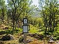 Norwegen Langfjorddalen Naturreservat Gamvik P1290402-2.jpg