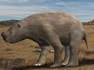 Diprotodontidae - Image: Nothotherium mitchelli