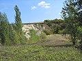 Novokhopyorsky District, Voronezh Oblast, Russia - panoramio (50).jpg