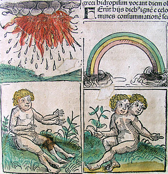 Monstrous birth - Monstrous births and omens in the Nuremberg Chronicle.
