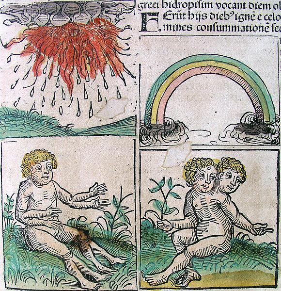 File:Nuremberg chronicles - Omens (CLIr).jpg