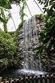 Nyíregyháza Zoo, palm-house.jpg