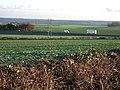 Oldcotes Road - geograph.org.uk - 308667.jpg
