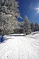 "On ski road ""Laleto"" crossing a blue ski run - panoramio.jpg"