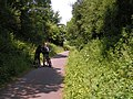 On the Tarka Trail - geograph.org.uk - 1345469.jpg